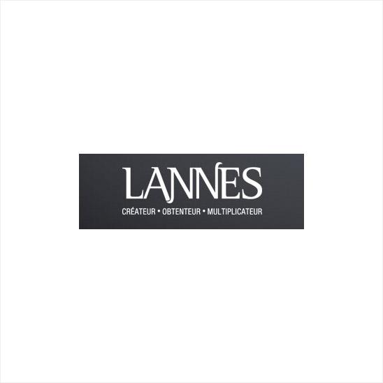 SAS Lannes et Fils