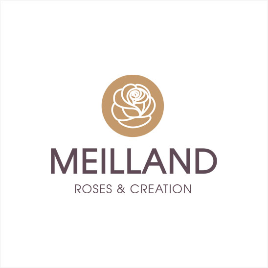 logo Meilland International Roses & Creation